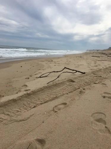 Una delle cose assolutamente da fare per visitare North Fork, Long Islan, è una passeggiata sulla spiaggia.