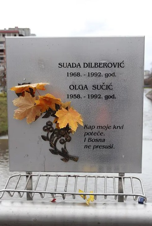 Il ponte Dilberović –Sučić. Superikonoskop [CC BY-SA 4.0 (https://creativecommons.org/licenses/by-sa/4.0)]