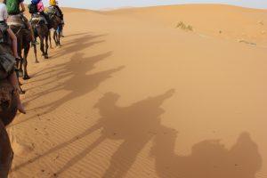 Obre lunghe al tramonto nel Sahara