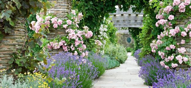 Somerset Classico – Roseti e cottage gardens 14-21 giugno 2022