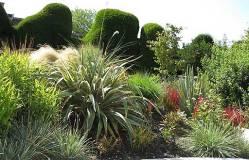Farrs Garden