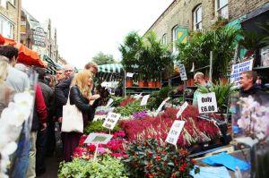 Columbia rd Flower Market