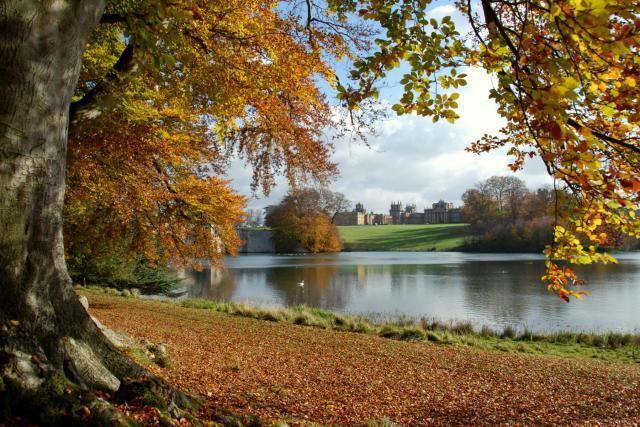 Cotswolds: Un viaggio nella storia del giardino