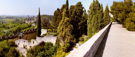 jardins-abbaye-saint-andre-071