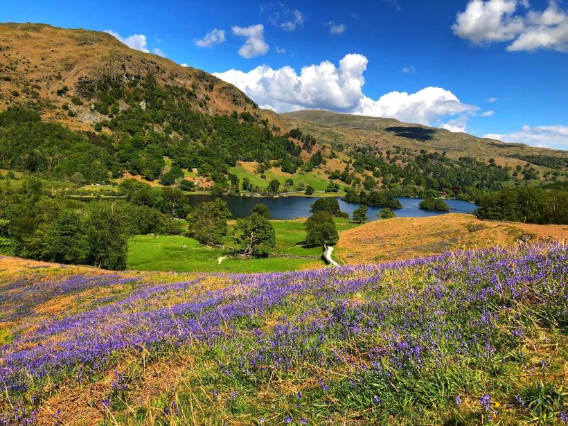 Lake District tra Giardini, Natura e Poesia