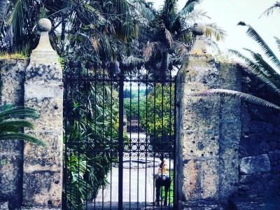Sicilia Orientale: giardini segreti e natura aprile 2021
