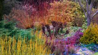 botanic gardenCambridgeBotanicGarden_EN-CA7890291629_1366x768_163