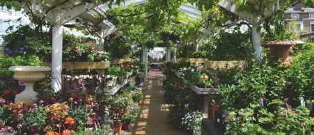 Clifton-nurseries-london2-28b3ef9