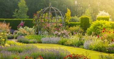 Mary-rose-garden-MarkLord-727x375