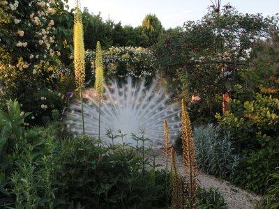 Meet the gardener: incontro con Michele Calore