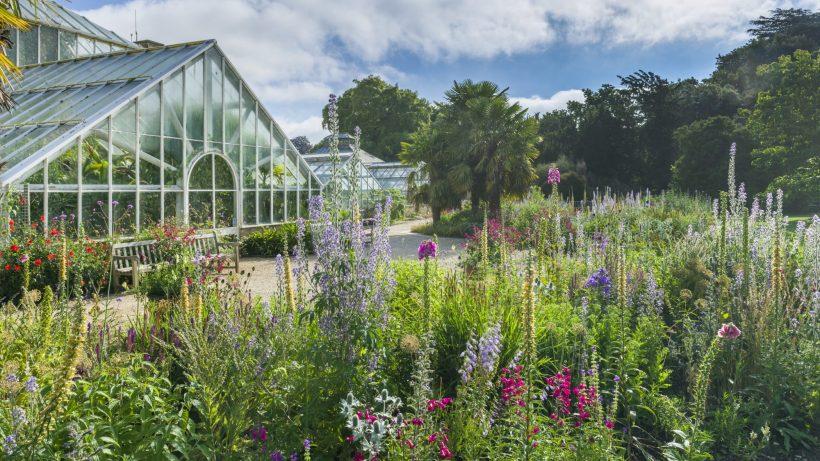 Bressingham, Brughiere fiorite e giardini privati del Norfolk