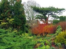 Cambridge Botanical Gardens winter garden