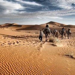 Le gambe stanche, gli occhi gonfi sia di sonno che della luce magnifica dell'alba nel deserto del Marocco. Io che scendo dal mio cammello e per pochi minuti guido la carovana verso non so dove. Le dune scomposte. Uno di quei momenti che non potrò mai dimenticare.