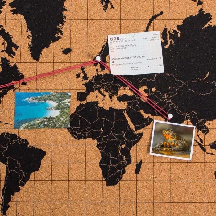 mappa-del-mondo-in-sughero-ed4