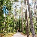 Skogskyrkogården di Stoccolma