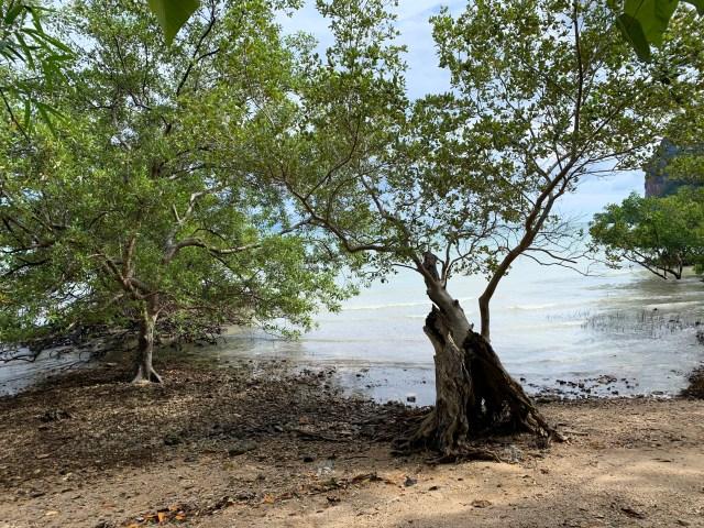 Spiaggia di Railay