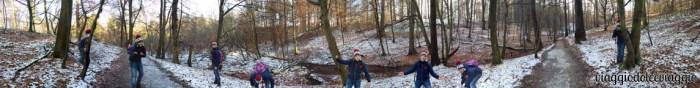 15-forest-sonian-bruxelles-bruxelles (1).jpg