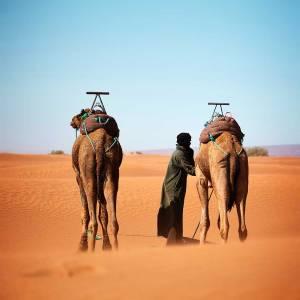 Viaggiamo sulle orme del deserto con Berberi e Nomadi in Marocco