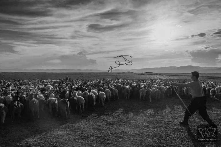 lazo nomadi mongoli