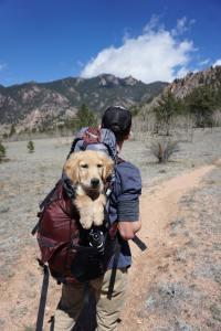 zaino capiente con cane
