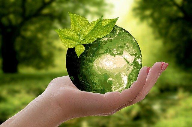 mondo sostenibile