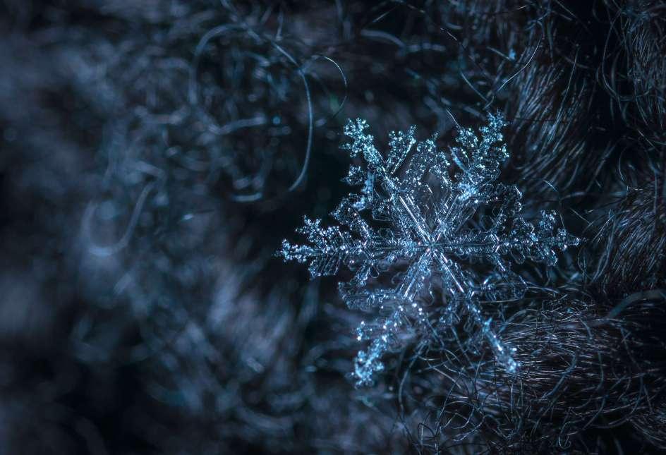 immagine di un fiocco di neve fotografato con lente macro