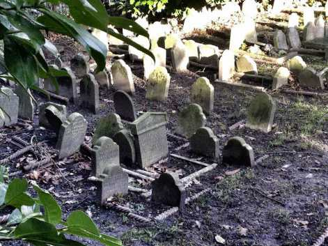 Risultati immagini per cimiteri vittoriani per cani hyde park