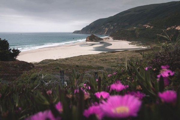 Paradiso in terra. Una spiaggia sulla costa di San Francisco