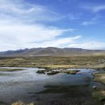 Reserva natural Salinas y Aguada Blanca