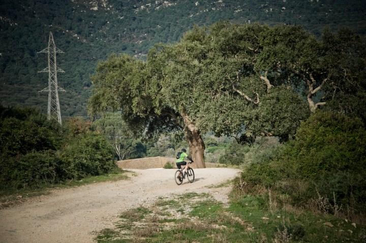 Ruta-senderismo-Algeciras-Tarifa-camino-interior6