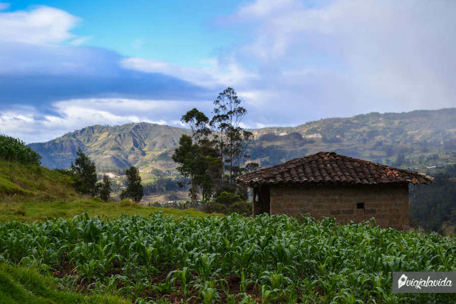 Casas tradicionales de adobe.