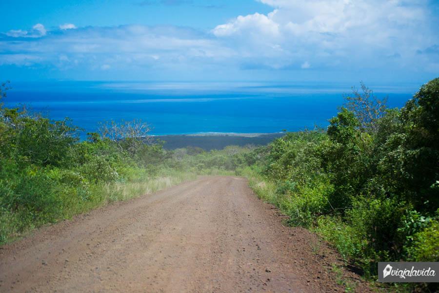 camino de tierra con vista al mar