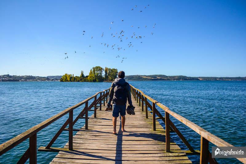 Hacia la isla de las almas navegantes, Chiloé.