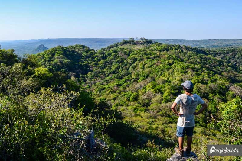 Cima del Cerro Santo Tomás.