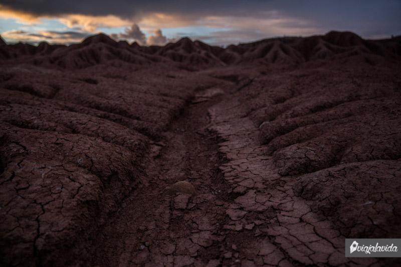 Tierra árida del desierto.