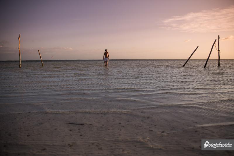 Caminando por encima del agua.
