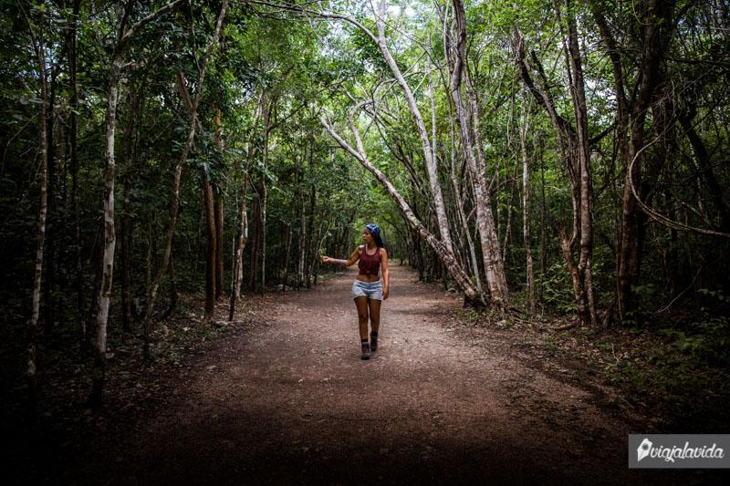 Caminos extensos y naturales en Cobá.
