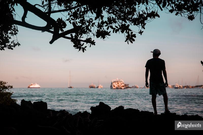 Qué hacer en la Isla Santa Cruz