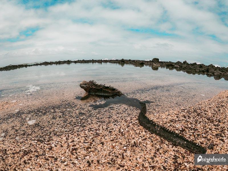 Playa del Amor en Isabela