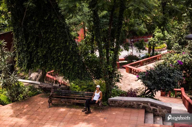 Sentada en la banca bajo un árbol en San Miguel de Allende