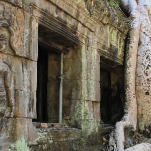 Templos de Angkor: conhecendo o Ta Prohm