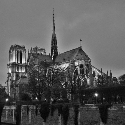 Paris do alto: subindo ao topo da Catedral Notre Dame
