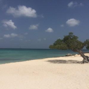 Dicas de Aruba: o (incrível) azul da Eagle Beach