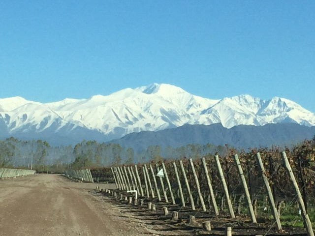 Passeio pelas vinícolas argentinas