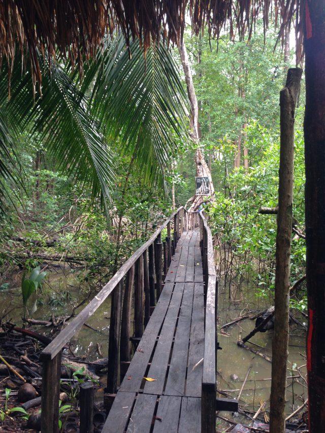 Passeios na Ilha de Marajó