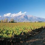Dicas de viagem e visitas às vinícolas do Chile – Post Índice