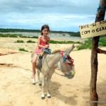 Jericoacoara com crianças: passeio à Lagoa da Torta, visita aos cavalos-marinhos e descida de esquibunda nas dunas!
