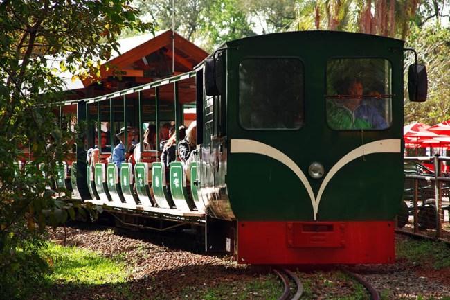 trenzinho-do-parque-nacional-Iguzu-Argentina