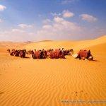 Abu Dhabi com crianças: diversão de mil e uma noites