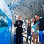 SeaWorld Orlando tem tours interativos e educacionais